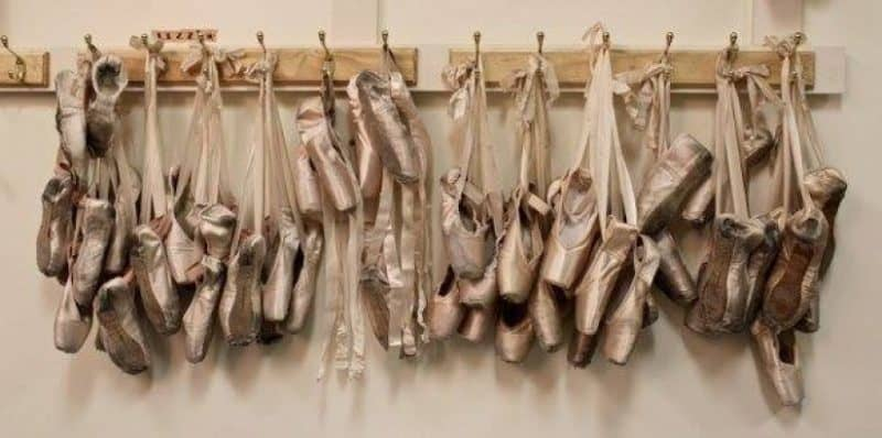 The Pointe Shoe, A History