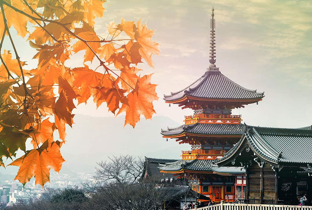 The History of Japan 8