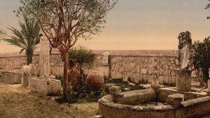 Carthage museum garden